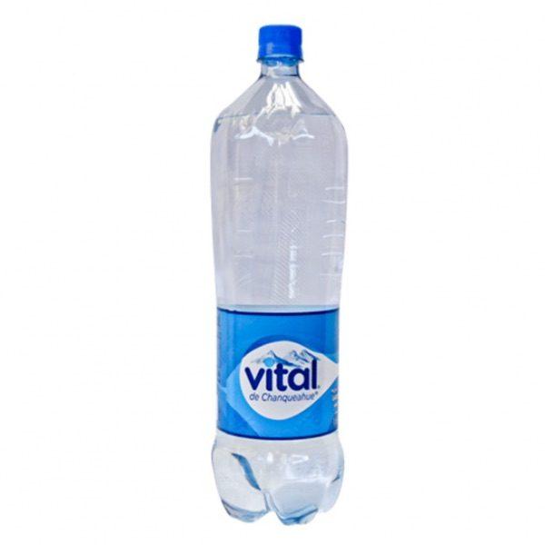 VITAL 6X1.6 DESECHABLE SIN GAS